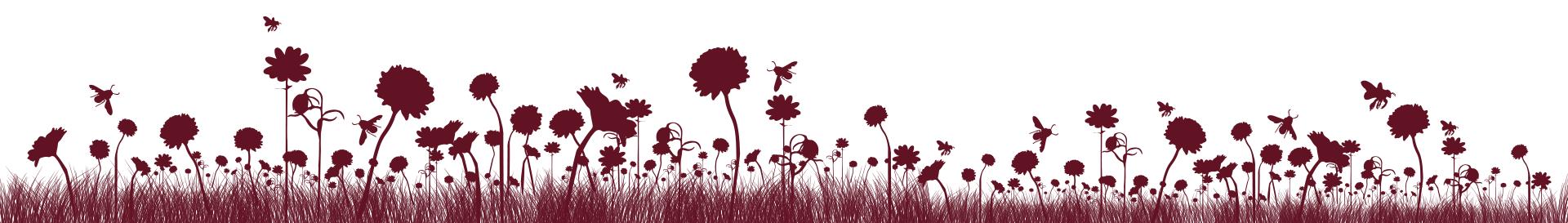 fleurs-bordeaux