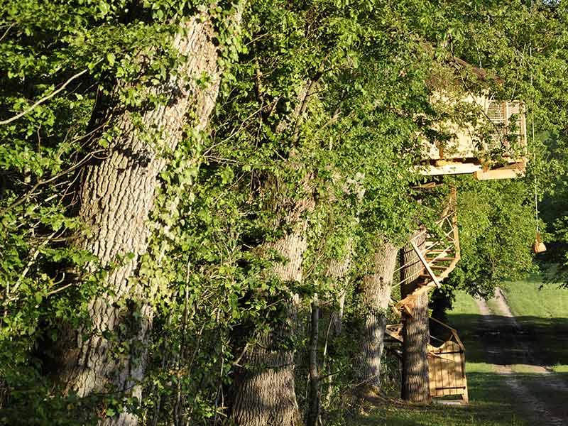 cabane dans les arbres tours 37